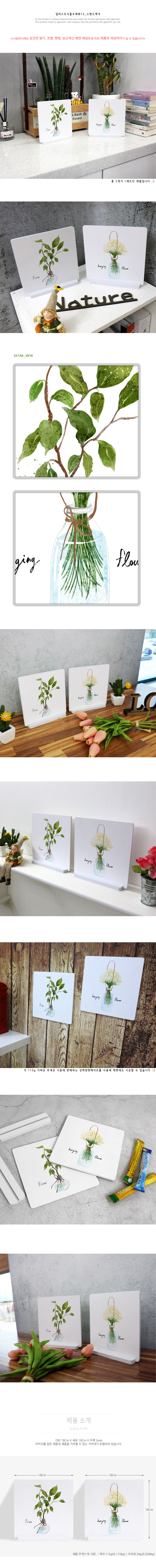 스탠드액자2P_일러스트식물수채화13 - 꾸밈, 12,800원, 홈갤러리, 사진아트