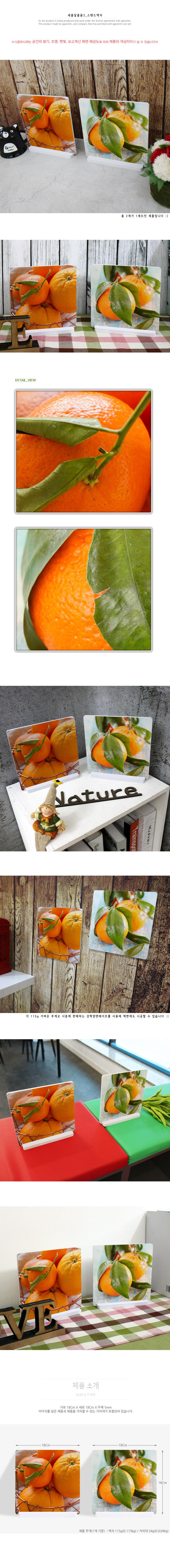 스탠드액자2P_새콤달콤귤3 - 꾸밈, 16,000원, 홈갤러리, 사진아트